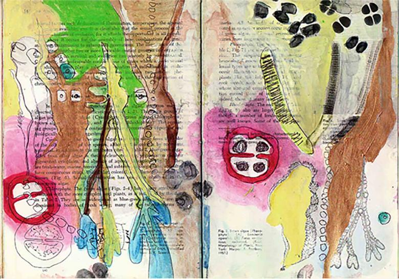 Biological Book.  Watercolor and ink on paper, 8x12 in - 20x30.5 cm. Fig. 275