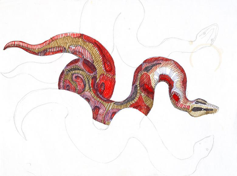 Snakes. Permanent markers on paper, 24x18in - 45.3x61cm. Fig. 118
