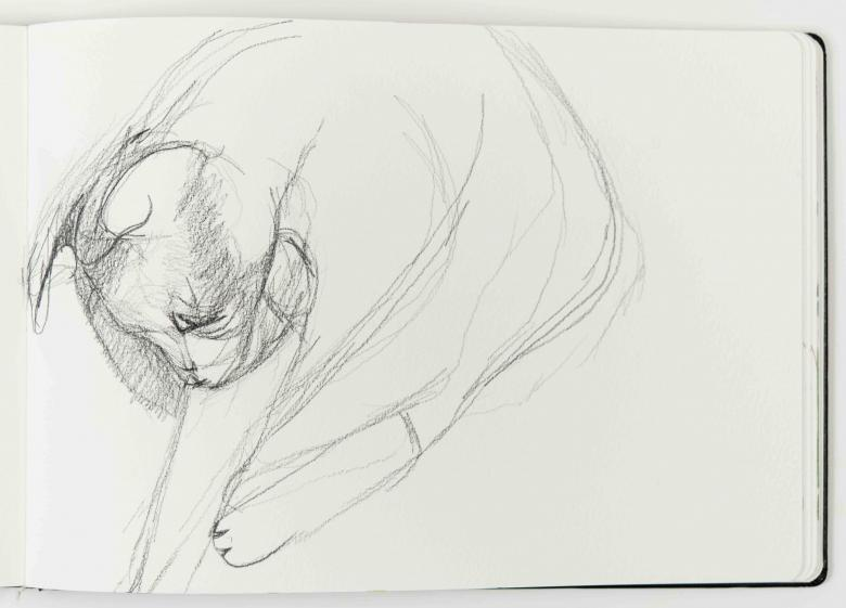 Maha. Pencil on paper, 8.1x11.5in - 21x29.5cm. Fig. 203